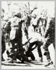 Serie 1984